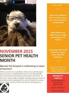 NOVEMBER SENIOR PET MONTH FLYER